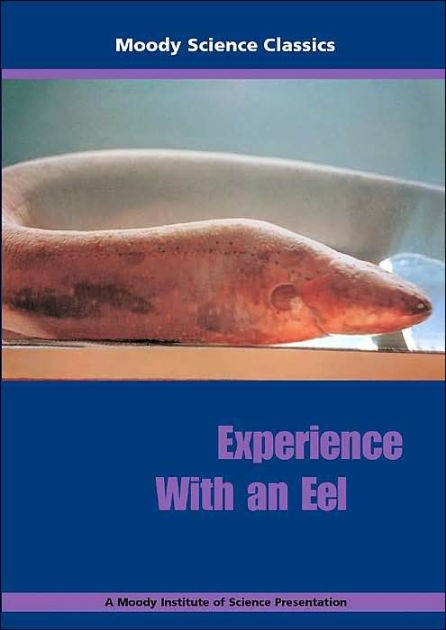 Experience With An Eel (DVD)