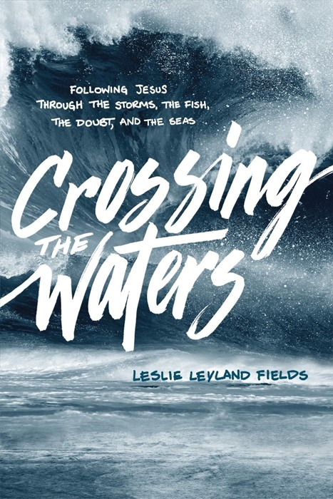 Crossing The Waters (Paperback)