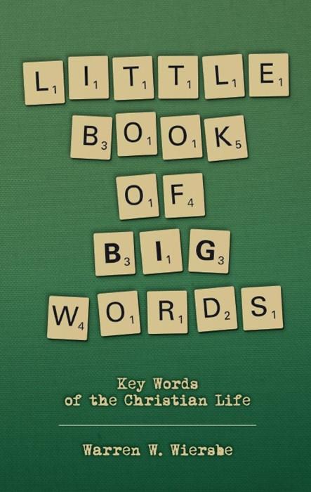 Little Book Of Big Words (Paperback)