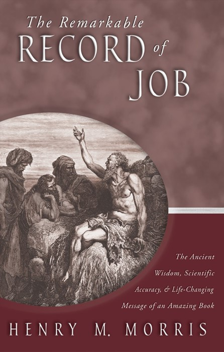 The Remarkable Record Of Job (Paperback)