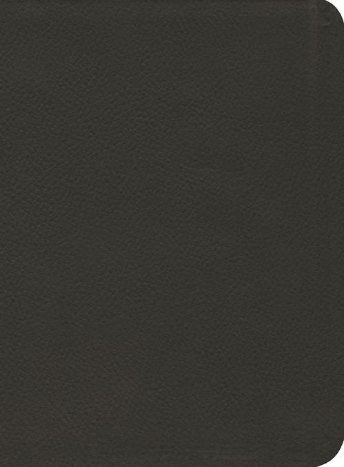 ESV Reformation Study Bible Gen. Leather Black (Leather Binding)