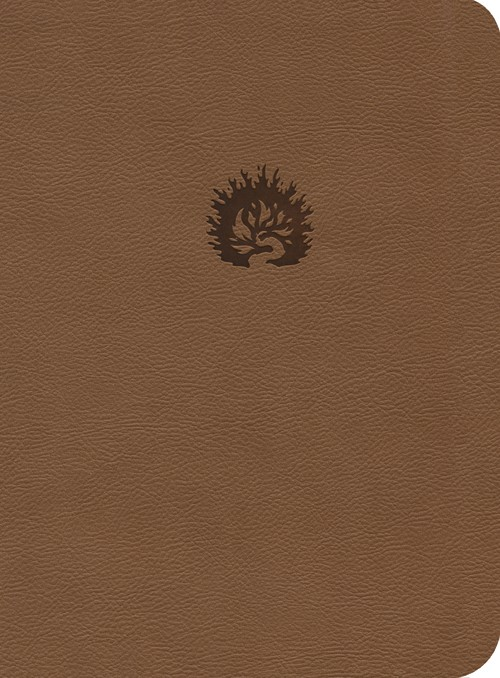 ESV Reformation Study Bible LL Light Brown (Leather-Look)