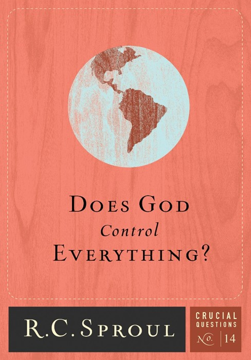 Does God Control Everything? (Paperback)