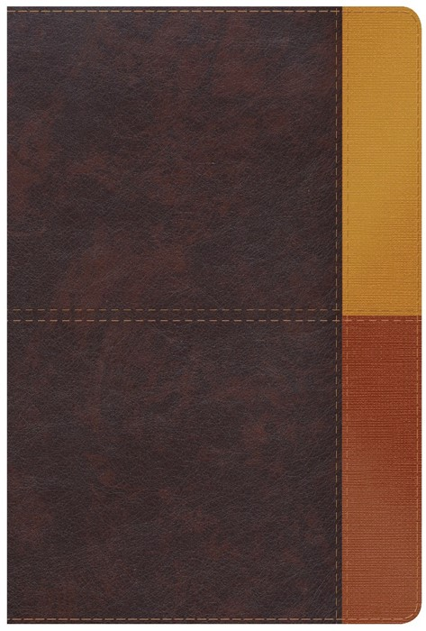 NIV Rainbow Study Bible Cocoa/Terra Cotta/Ochre (Imitation Leather)