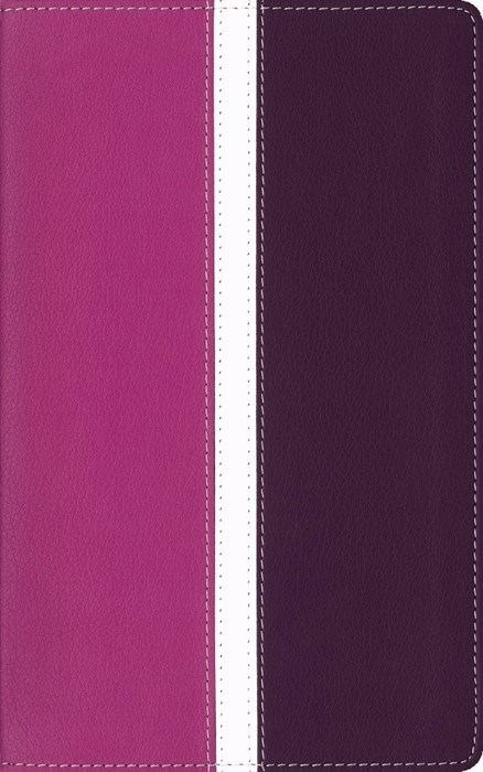 Amplified Bible IL Pink/Purple Indexed (Imitation Leather)