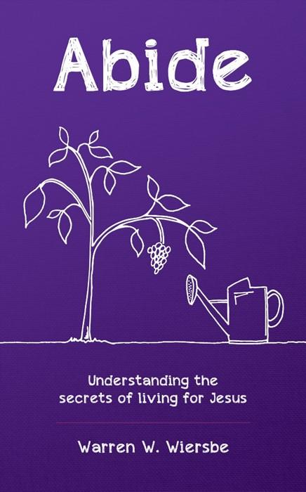Abide: Understanding the Secrets of Living for Jesus (Paperback)