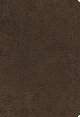 ESV Large Print Compact Bible (Microsuede, Brown) (Imitation Leather)