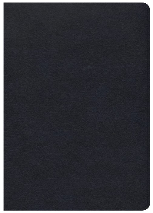 CSB She Reads Truth Bible, Navy Leathertouch (Leather Binding)