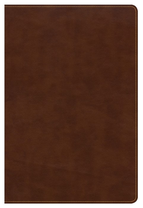 CSB Large Print Ultrathin Reference Bible, British Tan (Imitation Leather)