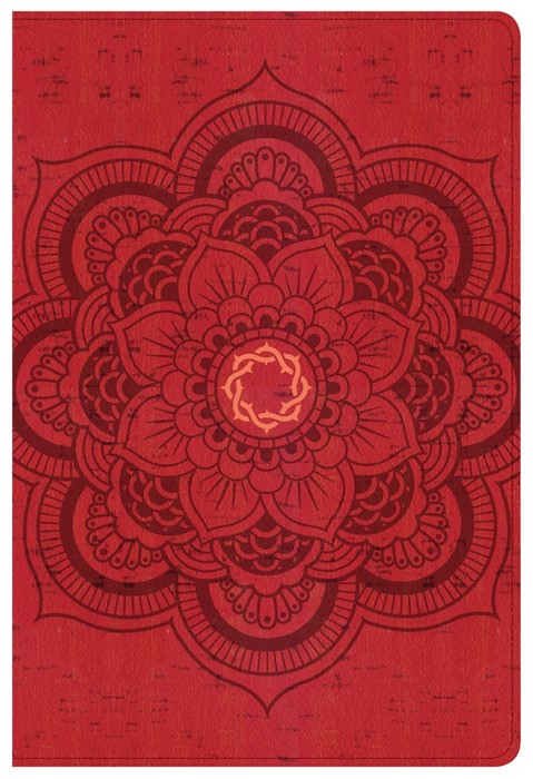 CSB Essential Teen Study Bible, Red Flower Cork Leathertouch (Imitation Leather)