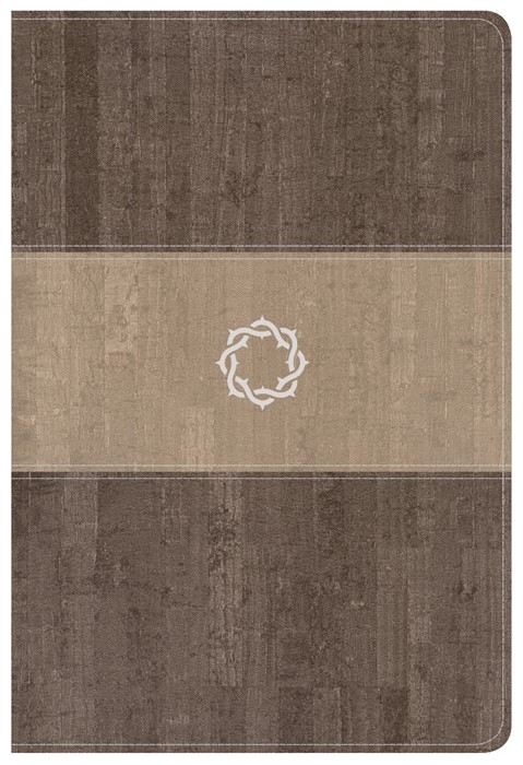 CSB Essential Teen Study Bible, Weathered Gray Cork (Imitation Leather)