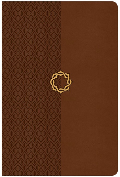 CSB Essential Teen Study Bible, Walnut Leathertouch (Imitation Leather)