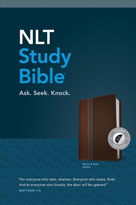 NLT Study Bible, Brown Slate, Indexed (Imitation Leather)