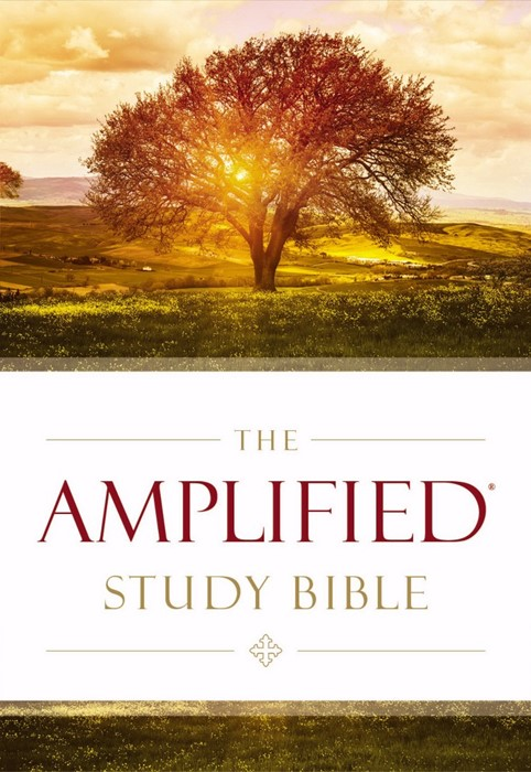 Amplified Study Bible (Hard Cover)