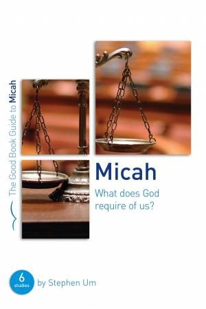 Micah: What Does God Require Of Us? (Paperback)