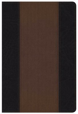 KJV Summary Bible Black/Brown (Imitation Leather)