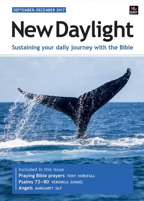 New Daylight September - December 2017 (Paperback)