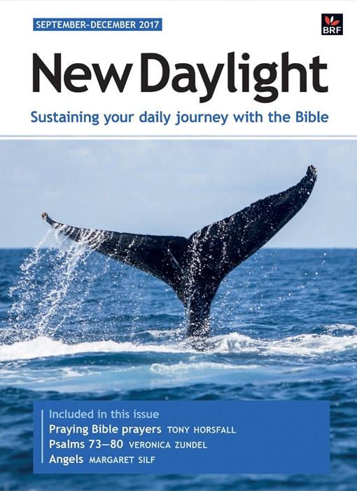 New Daylight Deluxe Edition September - December 2017 (Paper Back)
