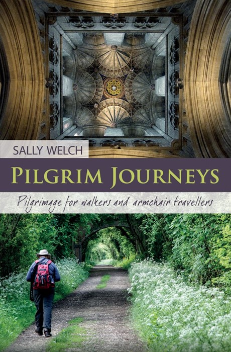Pilgrim Journeys (Paperback)