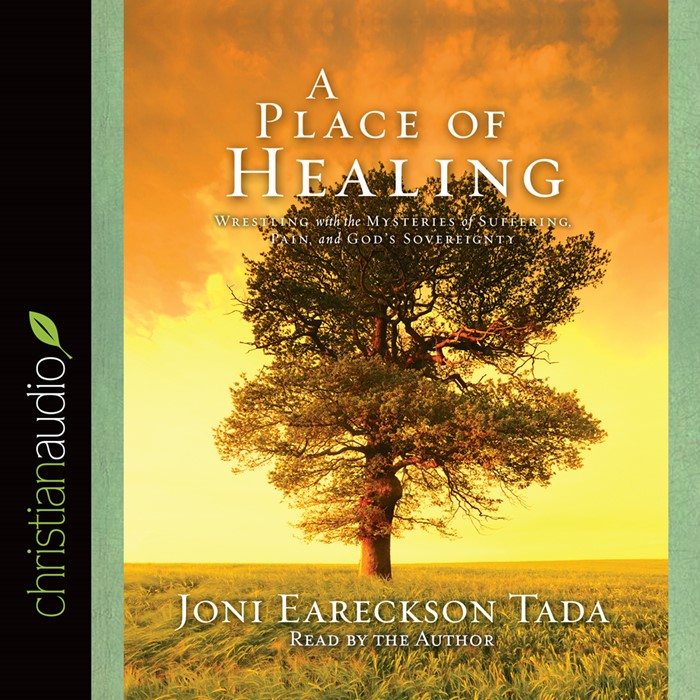 A Place Of Healing (CD- Audio)