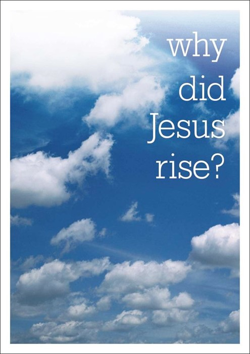 Why Did Jesus Rise? (Paperback)