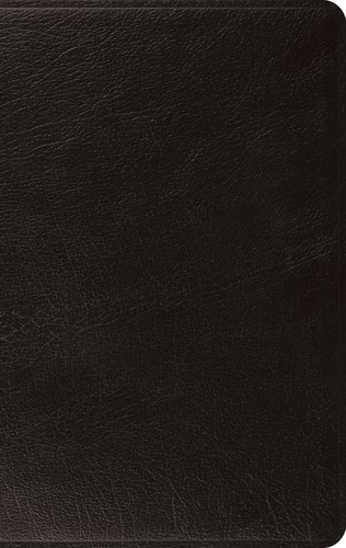 ESV: Large Print Thinline Bible (Black) (Leather Binding)