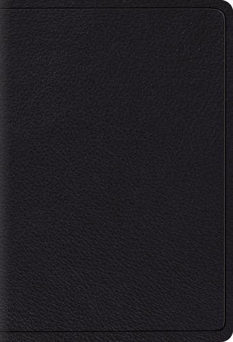 ESV: Large Print Compact Bible (Black) (Leather Binding)