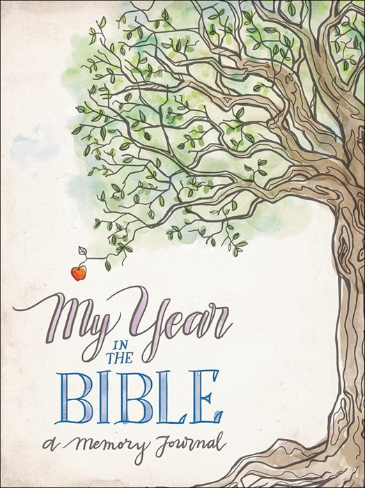 My Year In The Bible (Paper Back)