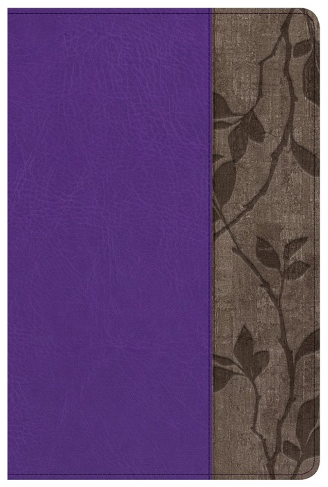 KJV Study Bible Personal Size, Purple With Brown Cork Leathe (Imitation Leather)