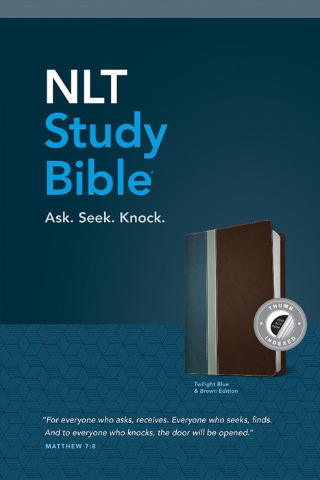 NLT Study Bible, Tutone (Imitation Leather)