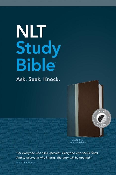 NLT Study Bible, Tutone Twilight Blue/Brown, Indexed (Imitation Leather)