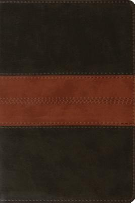 ESV Personal Reference Bible TruTone, Deep Brown/Tan (Imitation Leather)