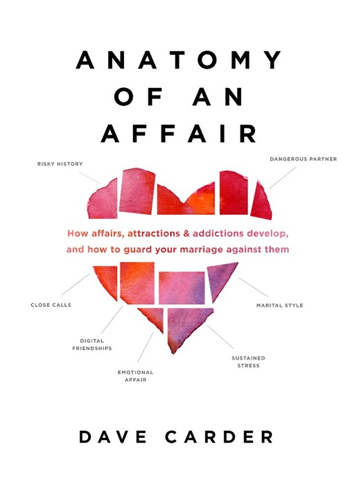 Anatomy of an Affair (Paperback)