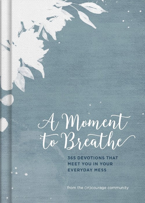 Moment to Breathe, A (Hard Cover)