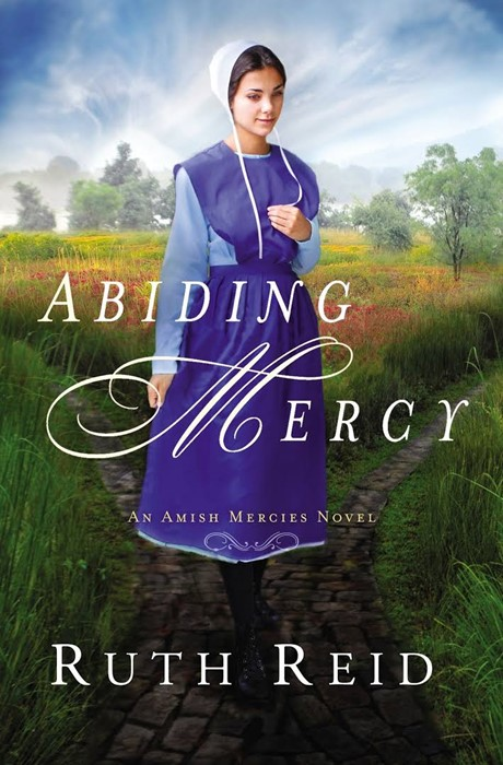 Abiding Mercy (Paper Back)