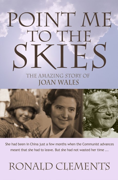 Point Me To The Skies (Paperback)