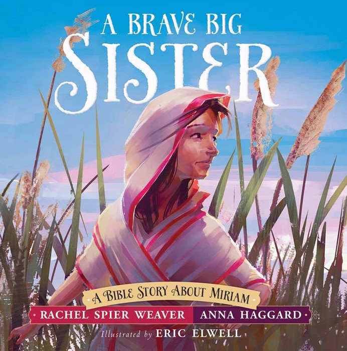 Brave Big Sister, A (Hard Cover)