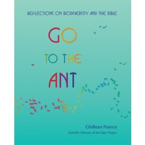 Go To The Ant (Paperback)