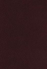 KJV Study Bible, The, Bonded Leather, Full-Color Ed. (Bonded Leather)