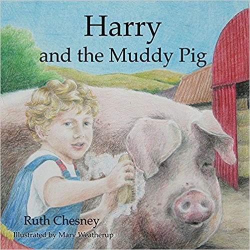 Harry And The Muddy Pig (Paperback)