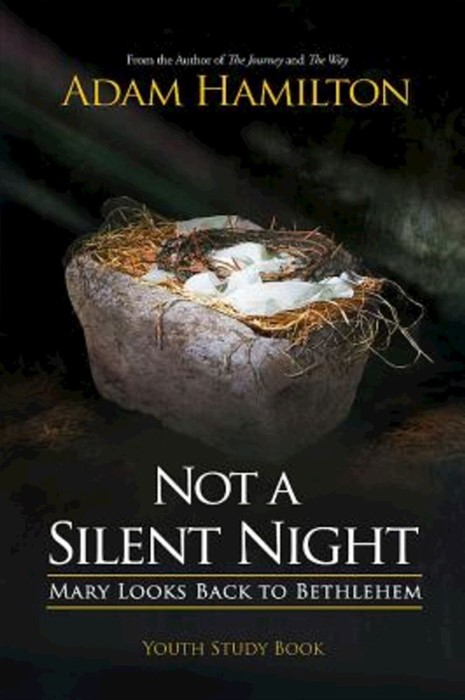 Not a Silent Night Youth Study Book (Paperback)