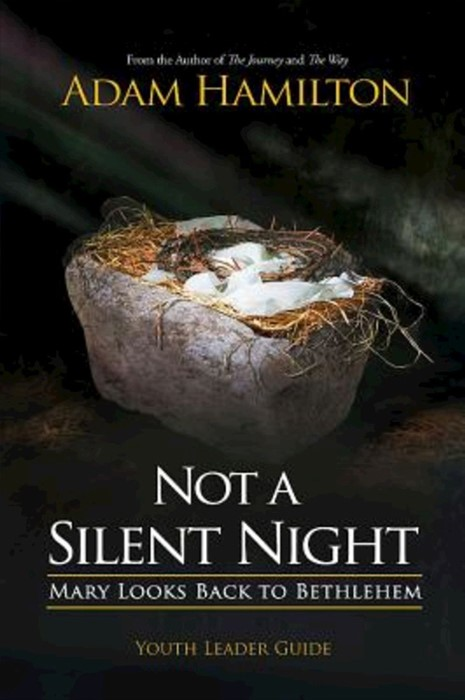 Not a Silent Night Youth Leader Guide (Paperback)