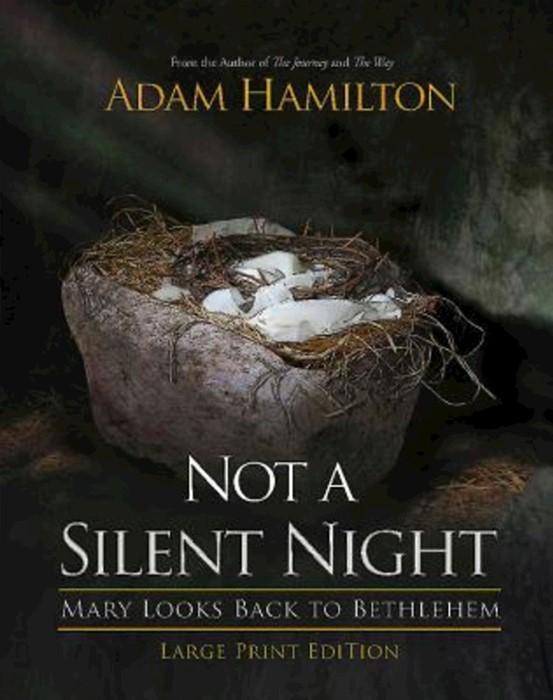 Not a Silent Night [Large Print] (Paperback)