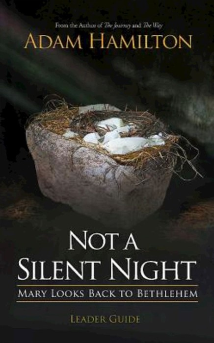 Not a Silent Night Leader Guide (Paperback)
