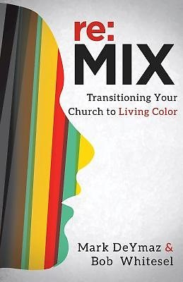 re:MIX (Paperback)