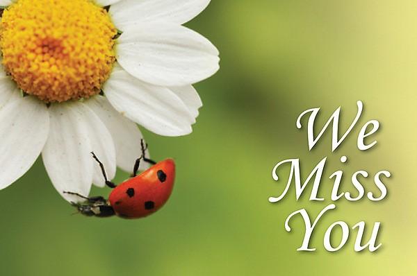 We Miss You Ladybug Postcard (Pkg of 25) (Postcard)