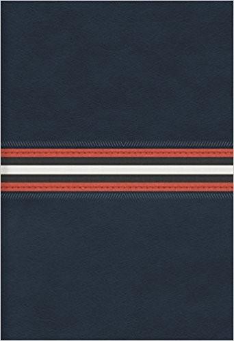 RVR 1960 Biblia Letra Grande Tamaño Manual, azul marino piel
