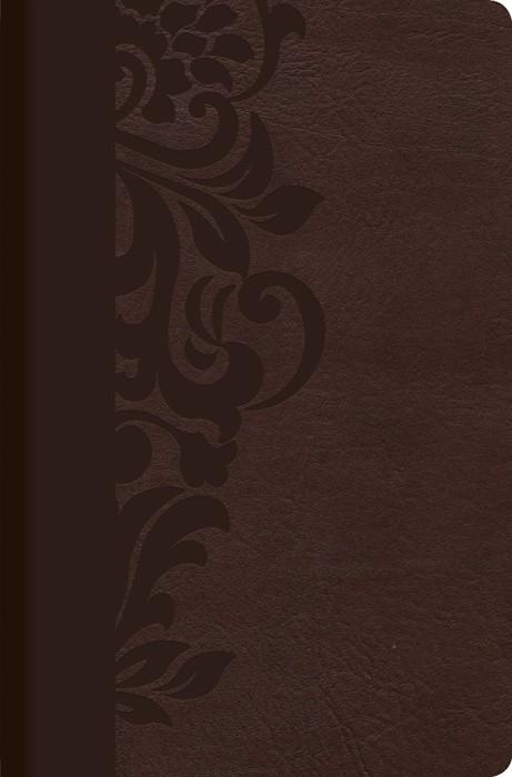 RVR 1960 Biblia de Estudio para Mujeres, café símil piel con (Imitation Leather)