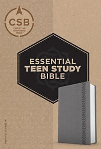 CSB Essential Teen Study Bible, Personal Size, Gray (Imitation Leather)