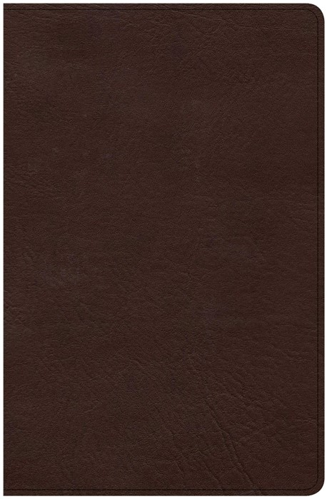CSB Ultrathin Bible, Brown LeatherTouch, Indexed (Imitation Leather)